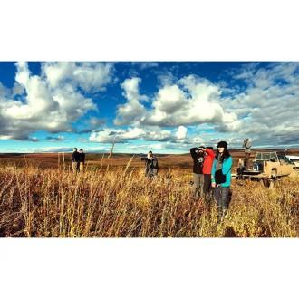 Tundra shoot!